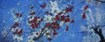 The Peach Blossom Land No 35, art for sale online by Shi Lifeng