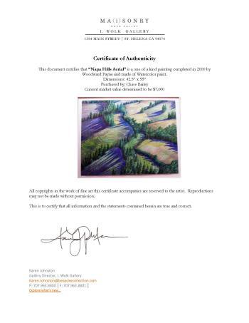 Napa Hills Aerial artwork by Woodward PAYNE