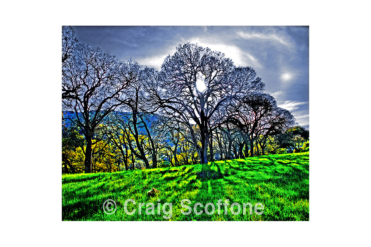 Shannon RD2 107 artwork by Craig Scoffone - art listed for sale on Artplode