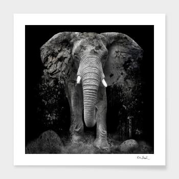 The Disappearance of the Elephant  artwork by Erik Brede