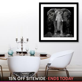 The Disappearance of the Elephant  artwork by Erik Brede - art listed for sale on Artplode