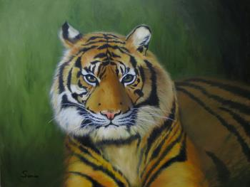 Crouching Tiger, art for sale online by Sonia Lam