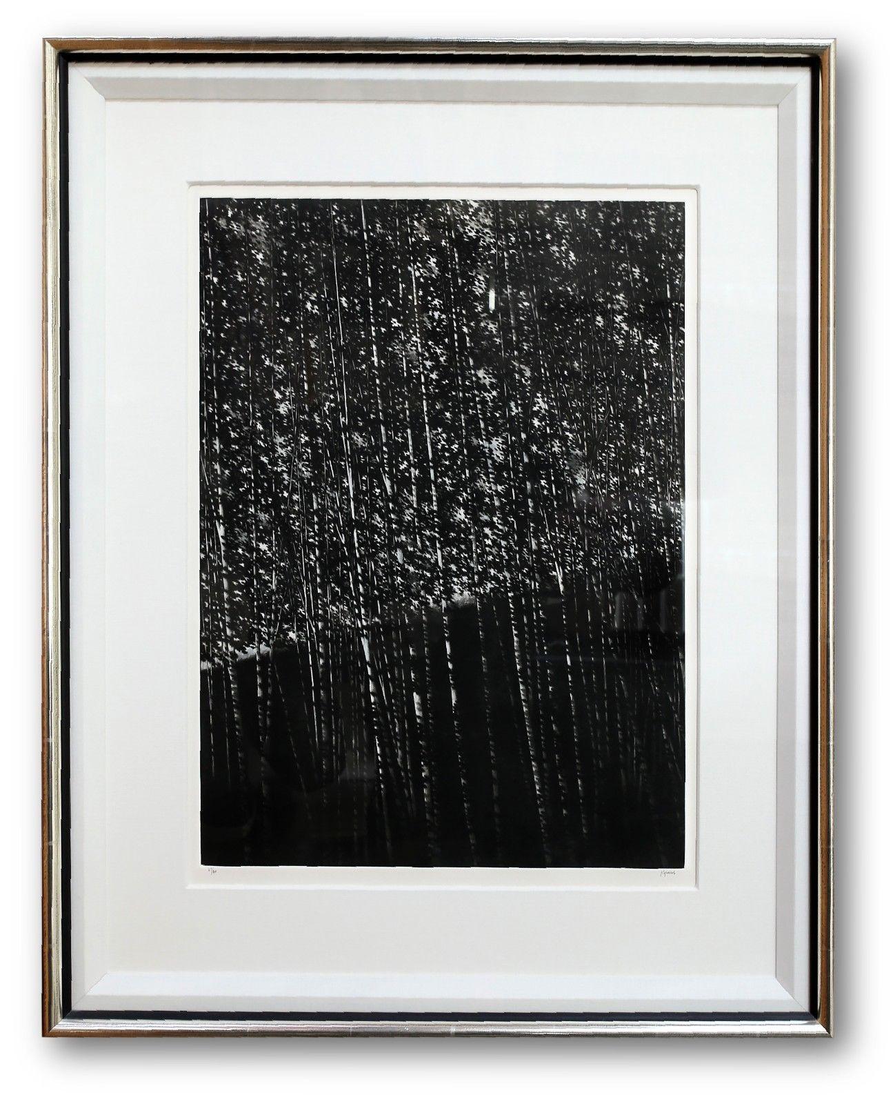 The White Forest artwork by Robert Kipniss - art listed for sale on Artplode