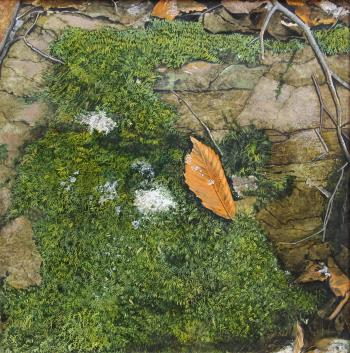 moss leaf and stone, art for sale online by HM Levan