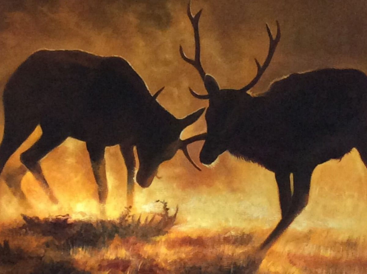 Buck Dance artwork by Mik Arts - art listed for sale on Artplode