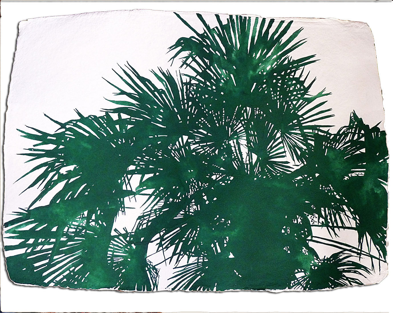 Palms artwork by Sara Jane Maltby - art listed for sale on Artplode