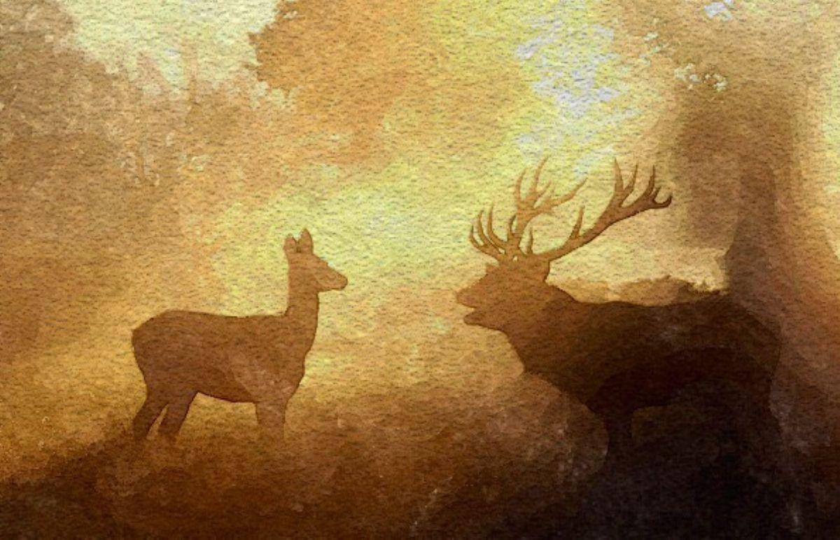 Ruting season artwork by Mik Goben - art listed for sale on Artplode