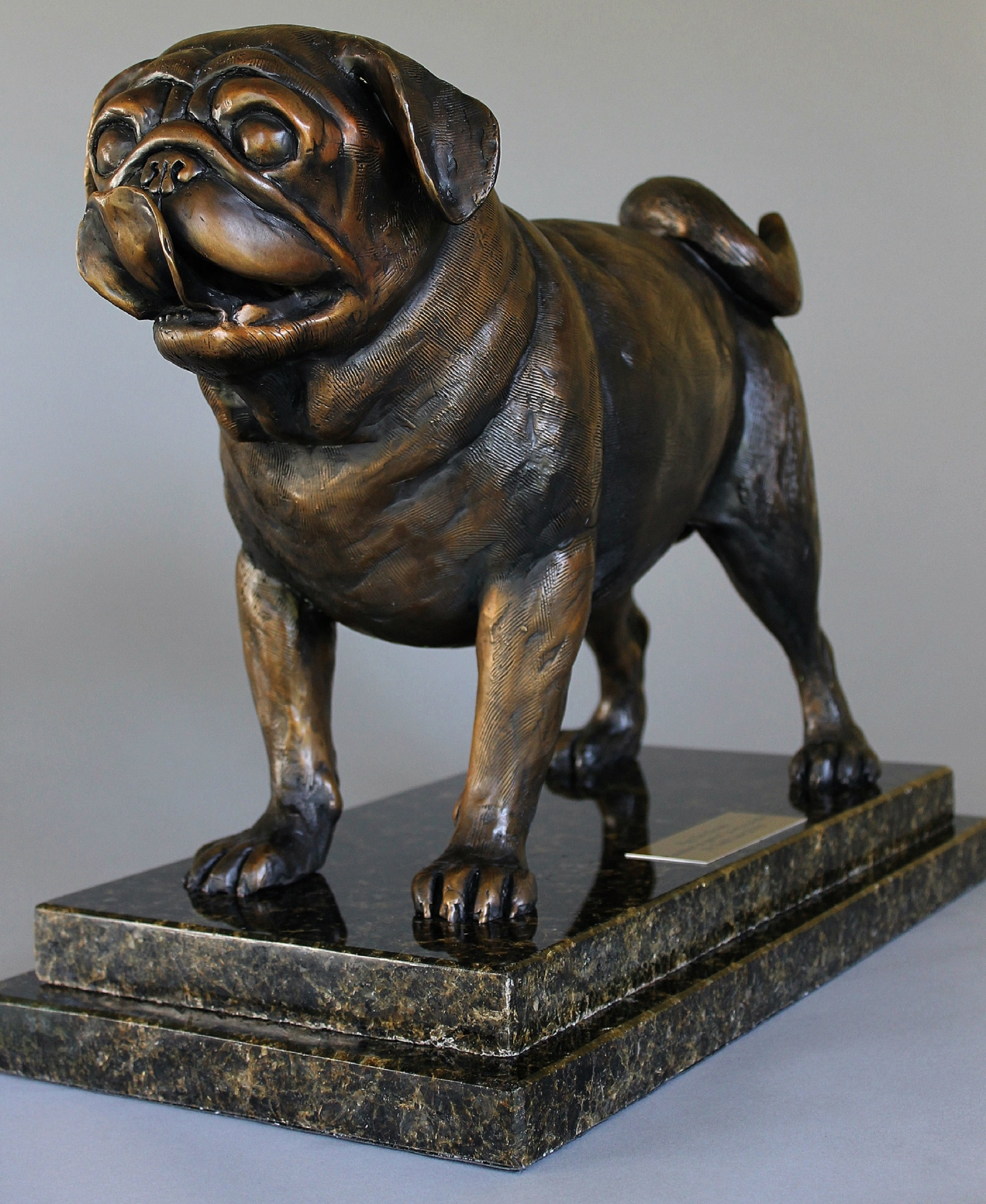 Life Size Pug artwork by Todd Lane - art listed for sale on Artplode