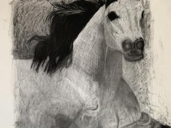 Noble Steed, art for sale online by Maxwell Davidson