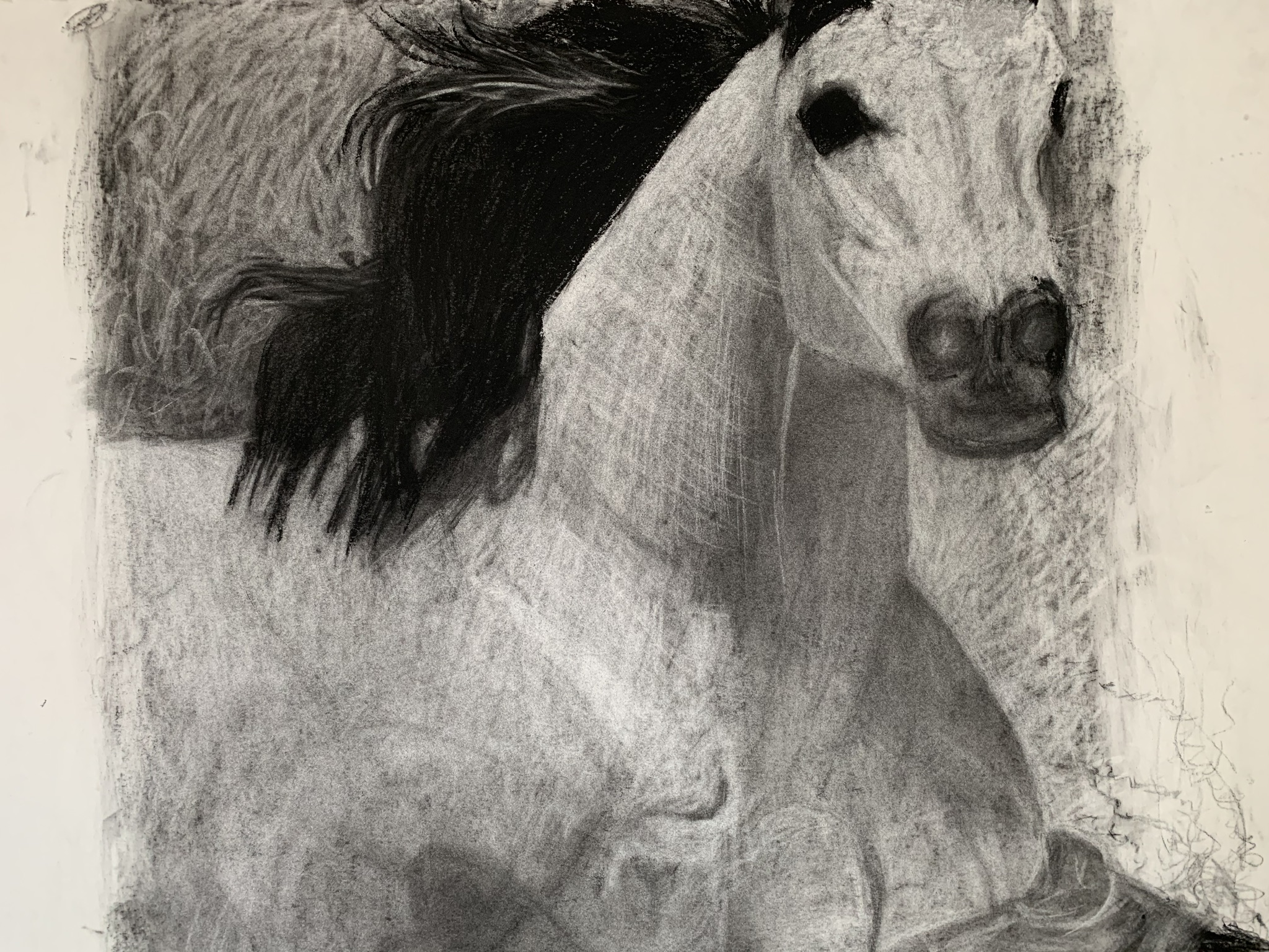 Noble Steed artwork by Maxwell Davidson - art listed for sale on Artplode