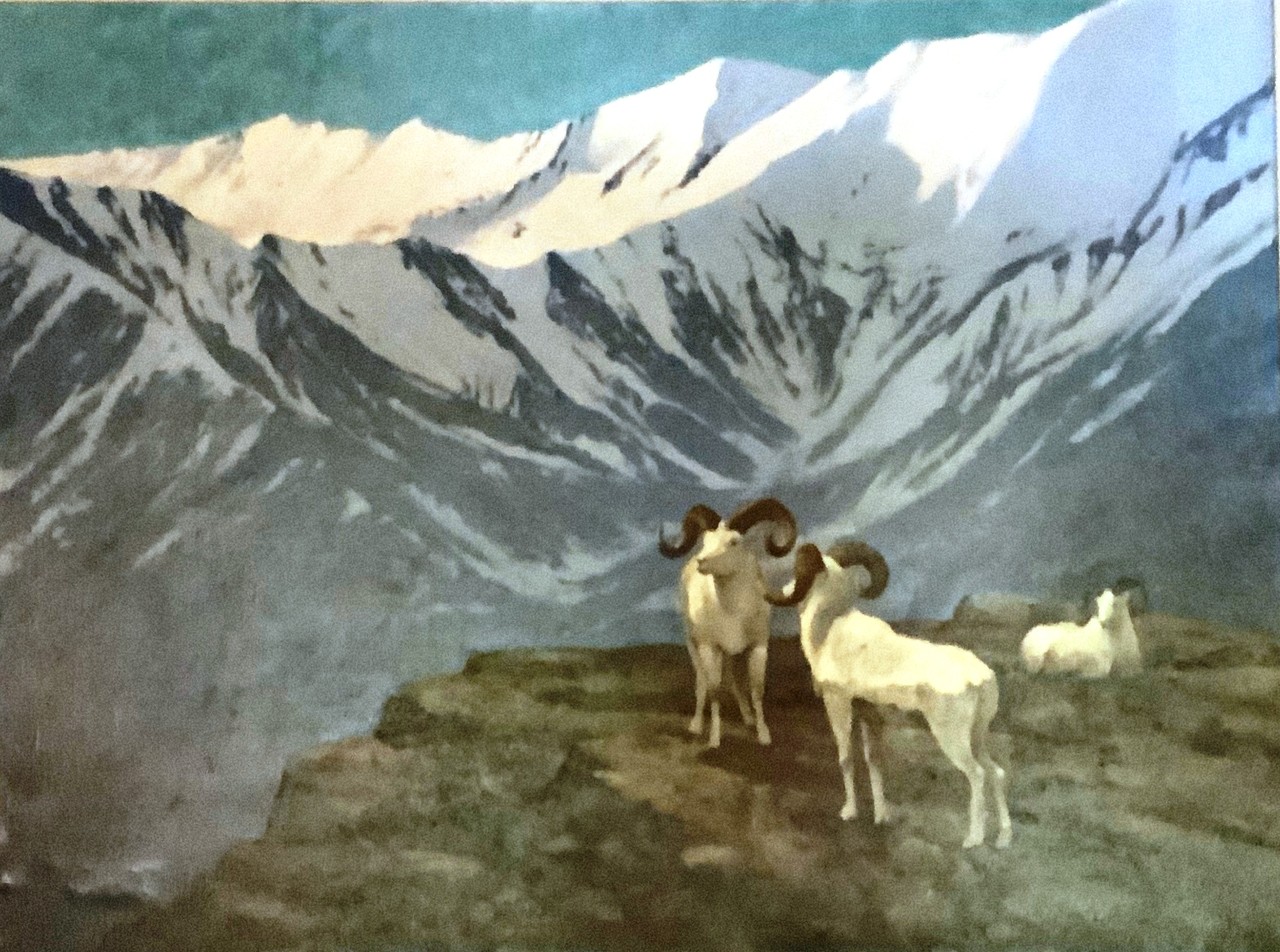 Mountain Goat artwork by William Schumpert - art listed for sale on Artplode