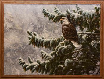 Winter Storm Eagle, art for sale online by Ray Shaw