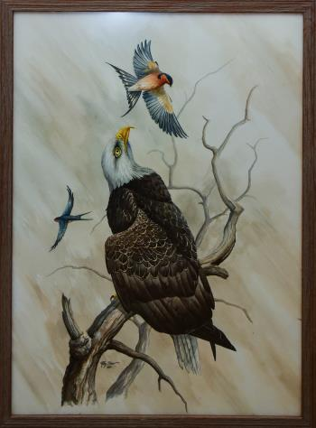 Eagle Eyes, art for sale online by Ray Shaw