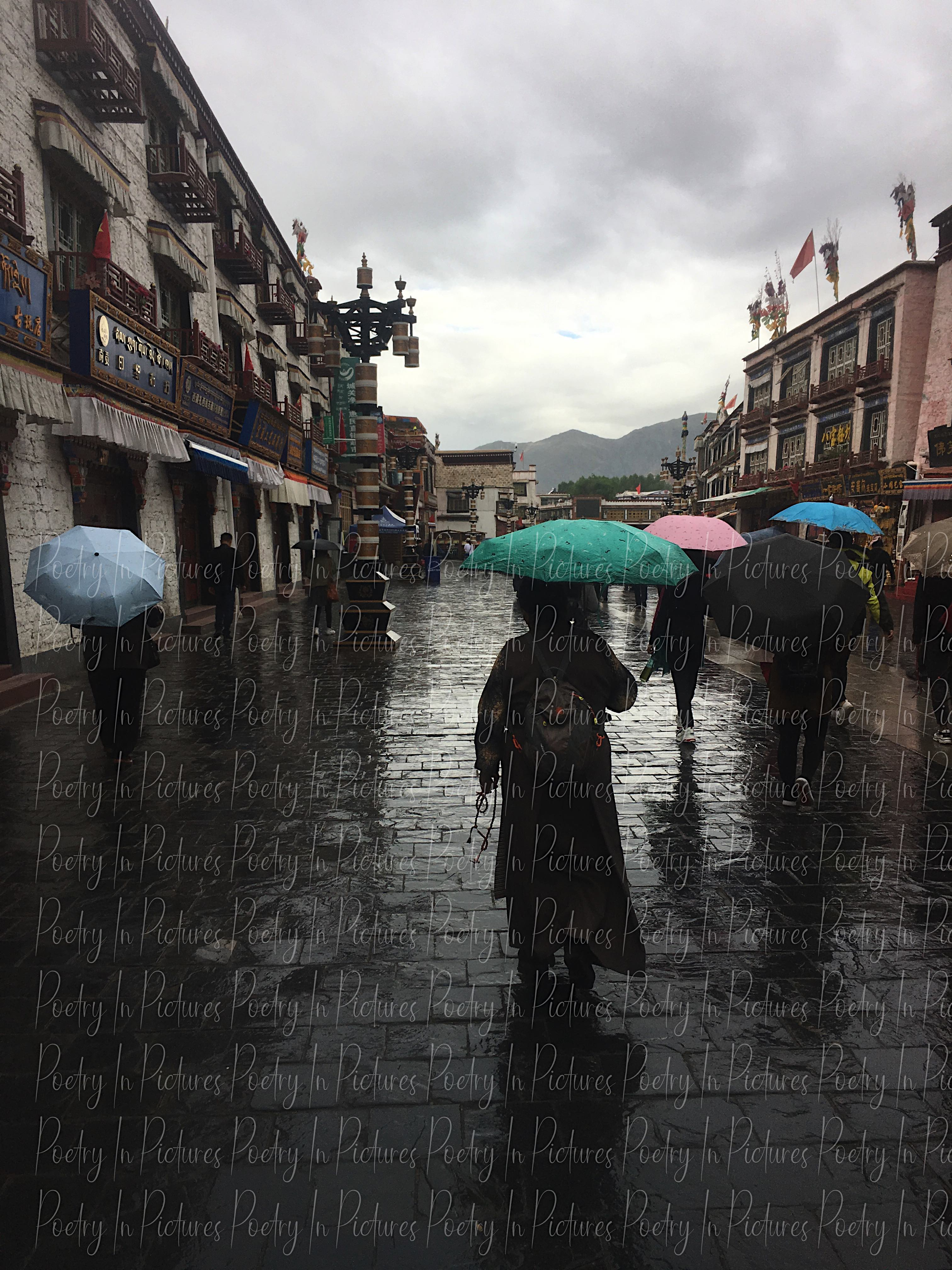 Lhasa Umbrellas artwork by Tracy Brown - art listed for sale on Artplode
