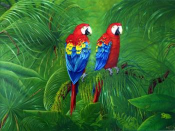 Macaws, art for sale online by Robin McIntyre