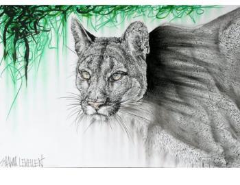 Lurking Cougar, art for sale online by Shawna Lewellen
