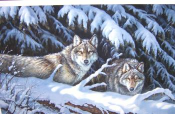 Black Timber Wolves, art for sale online by Rosemary Millette