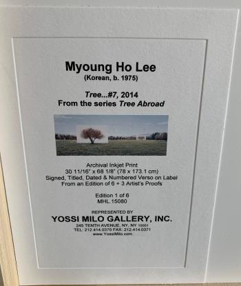 Tree No 7 artwork by Myoung Ho Lee
