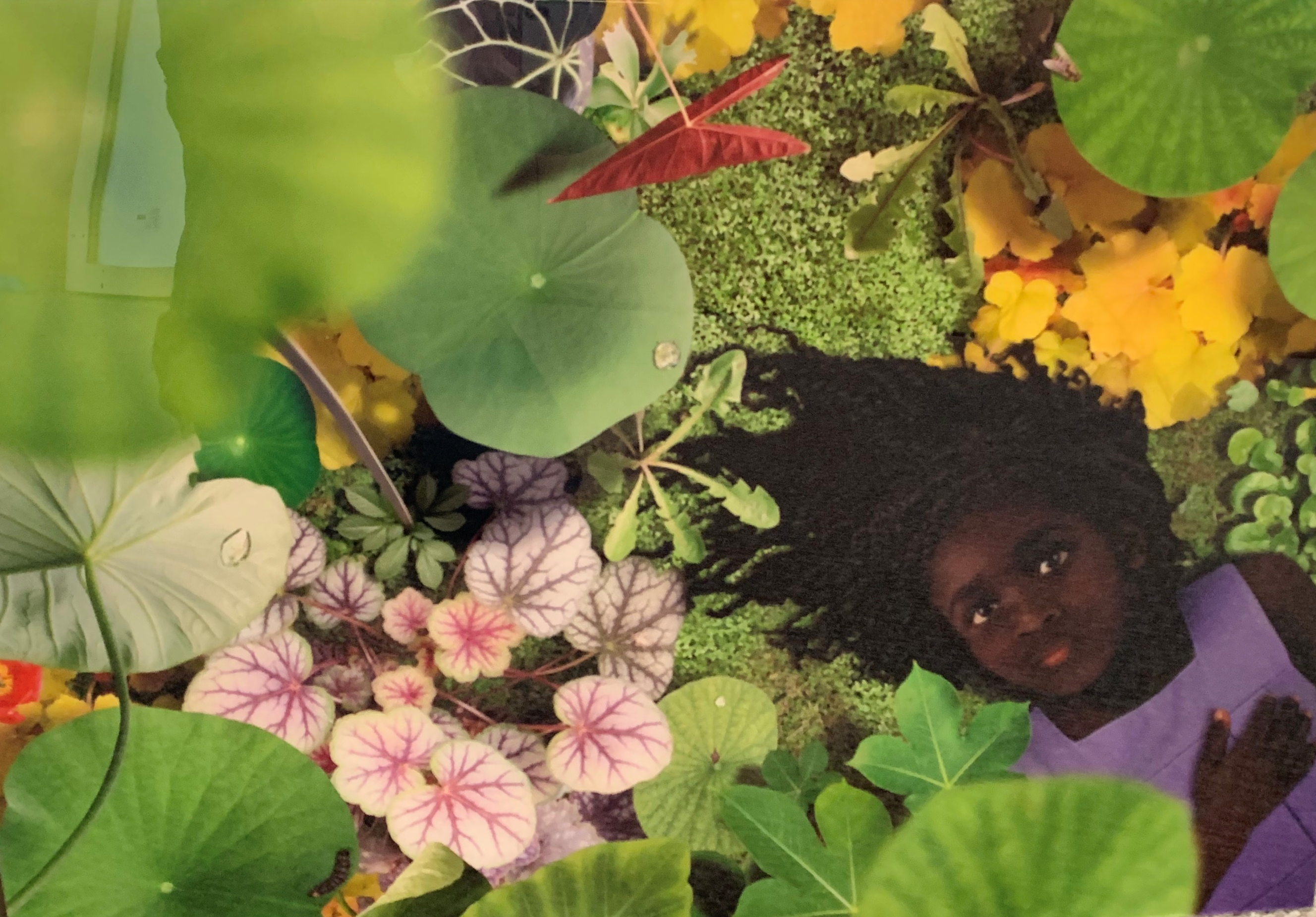 Dawn No 2 artwork by Ruud Van Empel - art listed for sale on Artplode