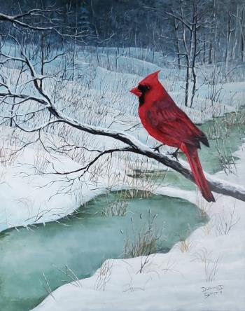 The Cardinal, art for sale online by Durwood Smith