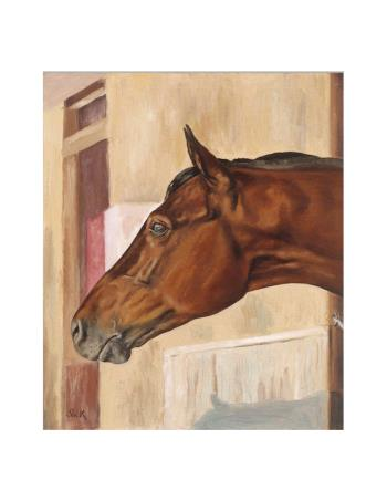 Seabiscuit, art for sale online by JS Slick